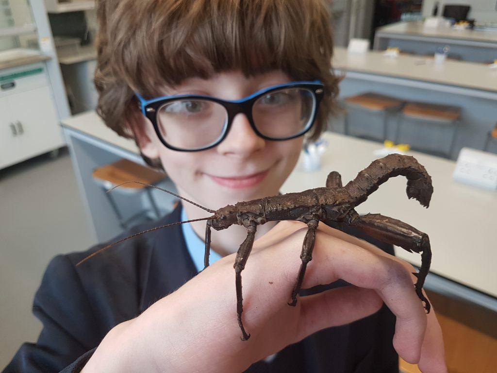 Abingdon School entomology society